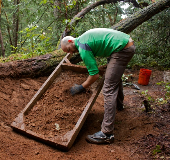 Sifting the excavated soil...